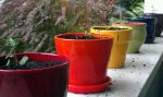 after a summer of dead flowers filling these pots, live kale should brighten things up.